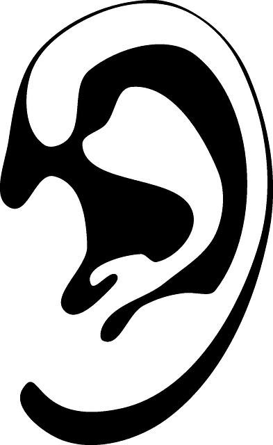 Ohr Icon